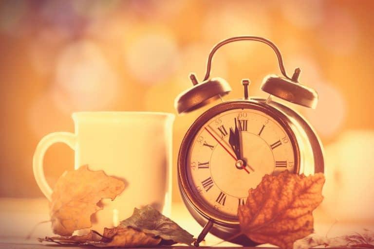Wecker neben Tasse mit Herbstblättern