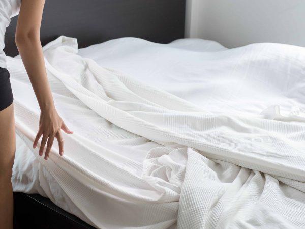Bettwanzen: Erkennen, bekämpfen und vorbeugen